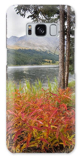 Autumn Quandry Galaxy Case