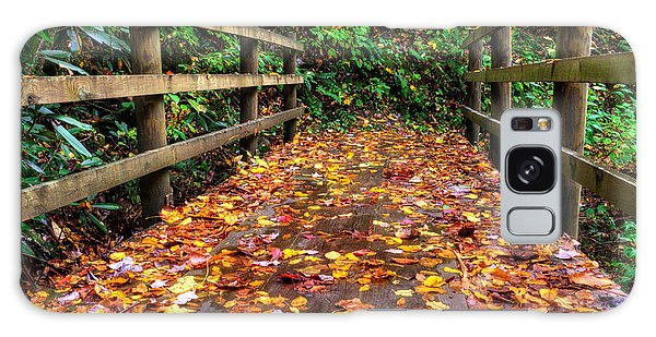 Autumn Rain At Joyce Kilmer Memorial Forest Galaxy Case