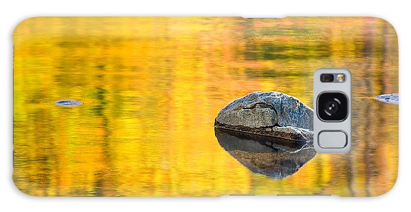 Autumn Reflected Galaxy Case by Joan Herwig