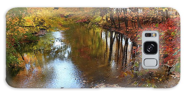 Autumn Reflection Galaxy Case