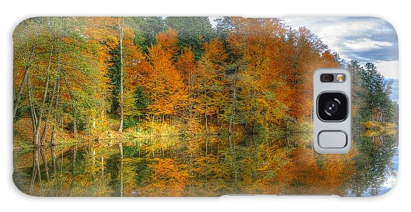 Autumn Reflection Galaxy Case