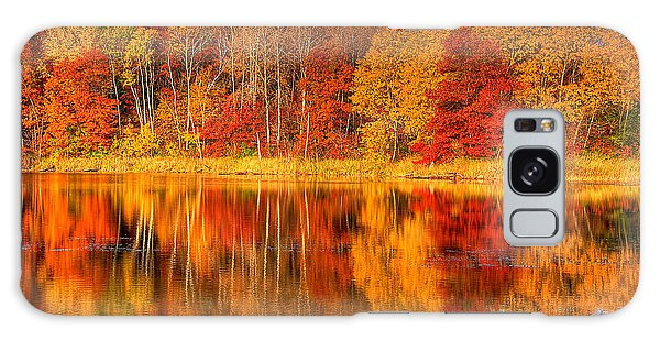 Autumn Reflections Minnesota Autumn Galaxy Case