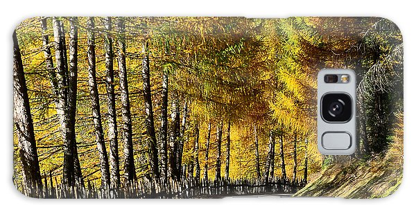 Winding Road Through The Autumn Trees Galaxy Case