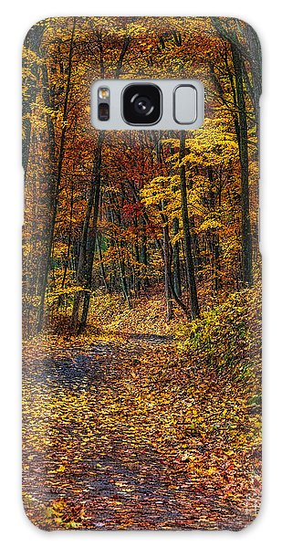 Autumn Roadway Reclamation Galaxy Case by Trey Foerster
