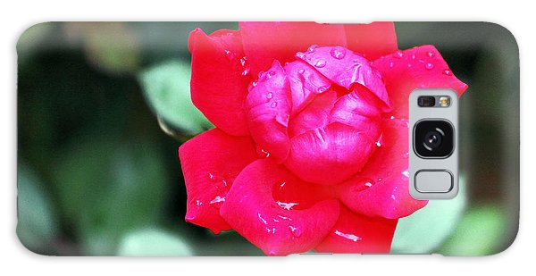 Autumn Rose After The Rain Galaxy Case