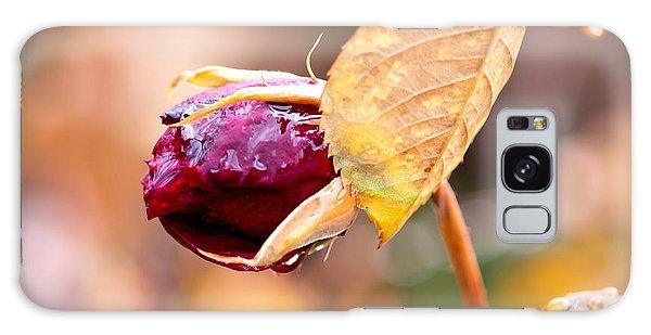 Autumn Rosebud Galaxy Case by Rona Black