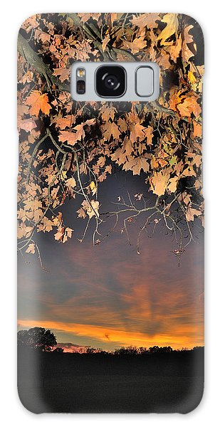Autumn Sky And Leaves 1 Galaxy Case