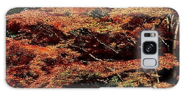 Autumn Solarisation 1 Galaxy Case by Rudi Prott