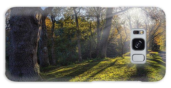 Autumn Stroll V2 Galaxy Case