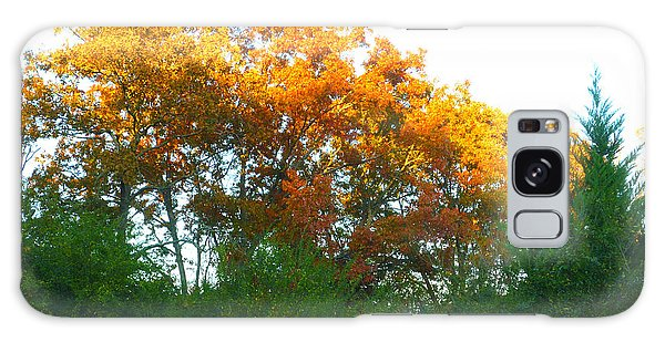 Autumn Sunlight Galaxy Case by Pete Trenholm