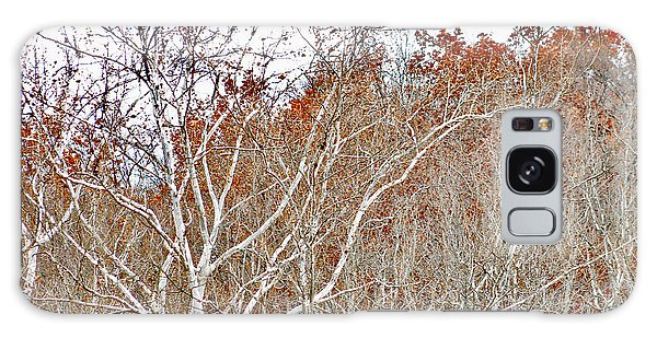 Autumn Sycamores Galaxy Case by Bruce Patrick Smith
