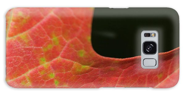 Autumn  Galaxy Case