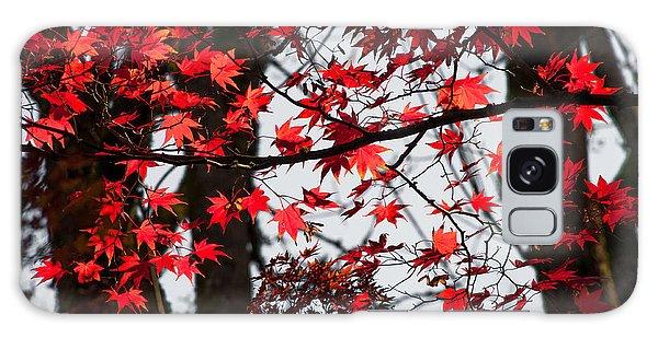 Autumn Time Galaxy Case