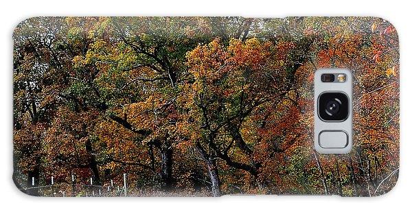 Autumn Trail 2 Galaxy Case