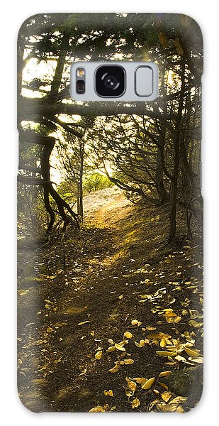 Autumn Trail In Woods Galaxy Case