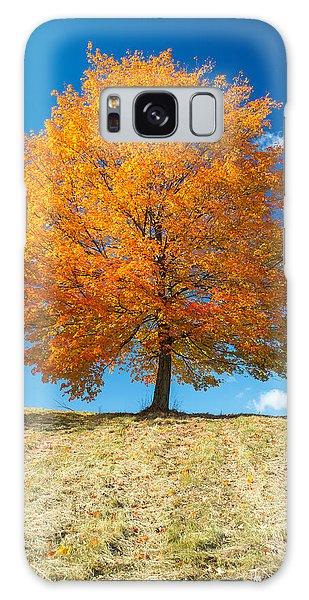 Autumn Tree - 1 Galaxy Case