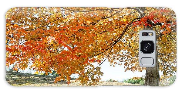 Autumn Tree - 2 Galaxy Case