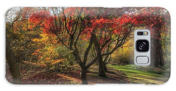 Autumn Tree Sunshine Galaxy Case