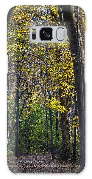 Autumn Trees Alley Galaxy Case by Sebastian Musial
