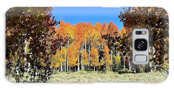 Autumn Trees Dixie National Forest Utah Galaxy Case by Deborah Moen