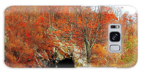 Autumn Tunnel Galaxy Case