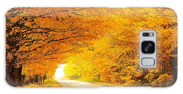 Autumn Tunnel Of Gold 8 Galaxy Case