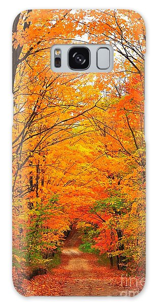 Autumn Tunnel Of Trees Galaxy Case