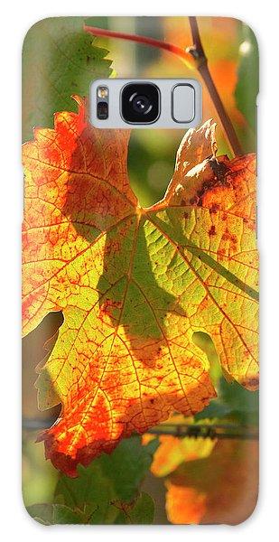 Boynton Galaxy S8 Case - Autumn Vine Leaf, Vineyard by David Wall
