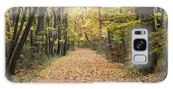 Autumn Walk Galaxy Case by John Crothers