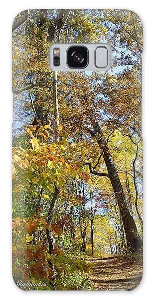 Galaxy Case - Autumn Woodland Trail Montgomery County Pennsylvania by A Gurmankin
