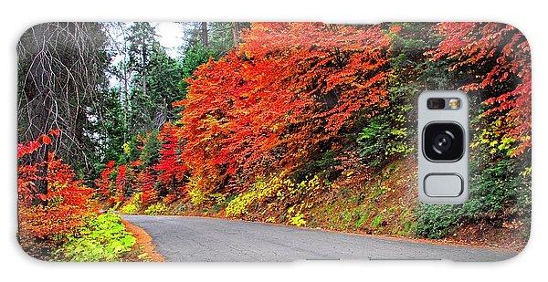 Autumn's Glory Galaxy Case by Lynn Bauer