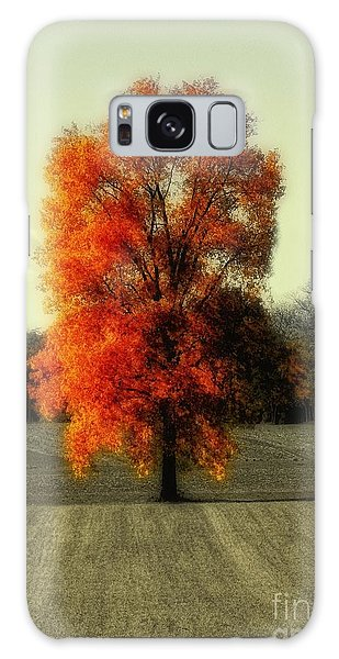 Autumn's Living Tree Galaxy Case