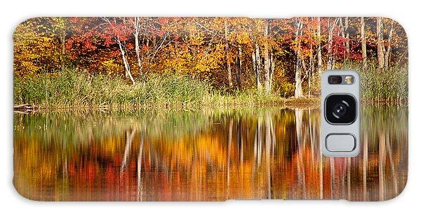 Autumns True Colors Galaxy Case