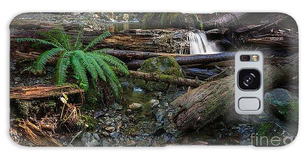 Avatar Grove Creek Bed Galaxy Case