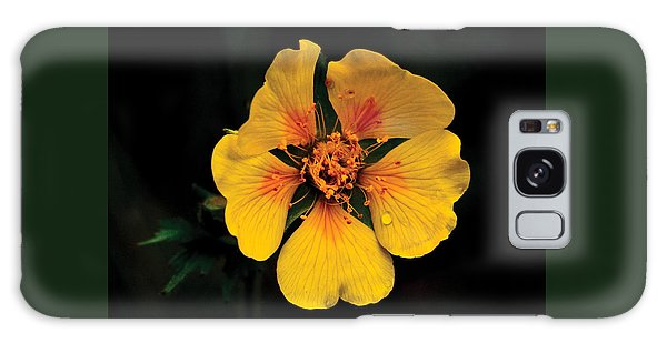 Avens Flower Galaxy Case