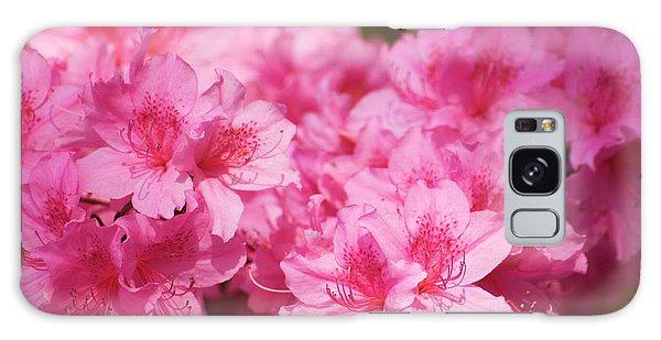 Hybrid Galaxy Case - Azalea (rhododendron Hybrid) by Maria Mosolova/science Photo Library