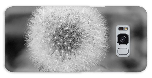 B And W Seed Head Galaxy Case
