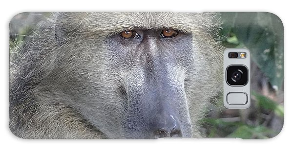 Baboon Portrait Galaxy Case