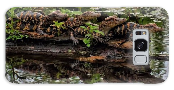 Baby Alligators Reflection Galaxy Case