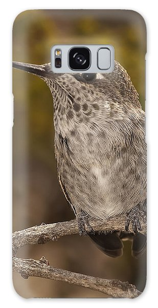 Baby Anna's Hummingbird Galaxy Case