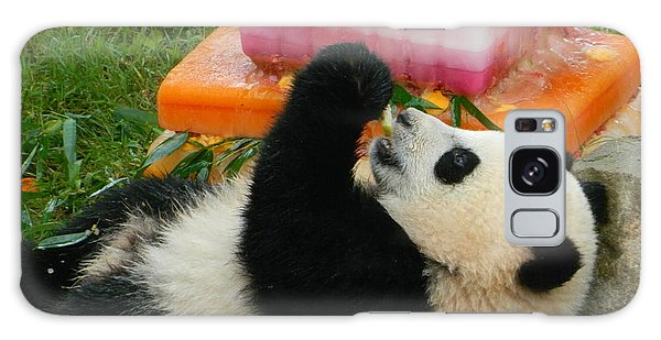 Baby Bao Bao's First Birthday Galaxy Case by Emmy Marie Vickers