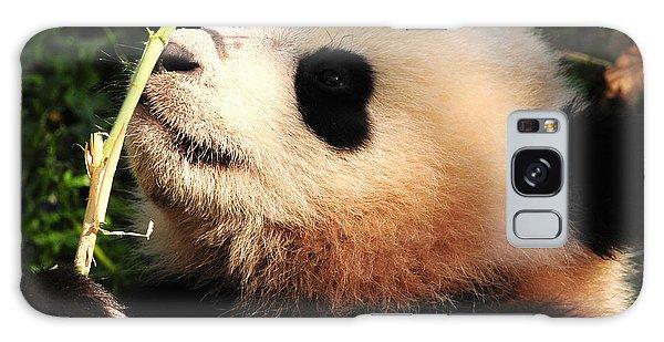 Baby Bear Bamboo Inspection Galaxy Case by Olivia Hardwicke