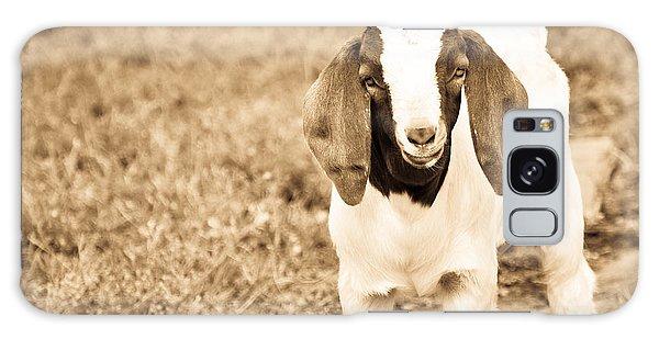 Galaxy Case - Baby Boer Goat by Cheryl Baxter