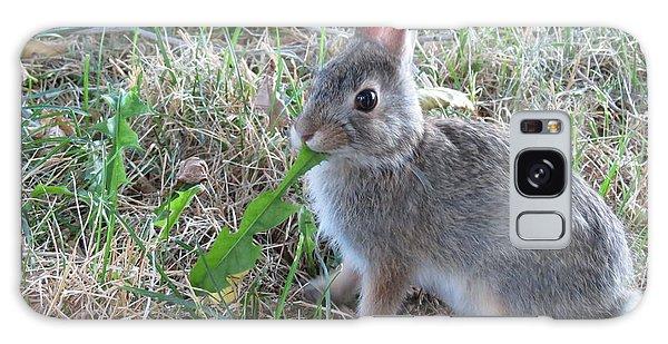Baby Bunny Eating Dandelion #01 Galaxy Case