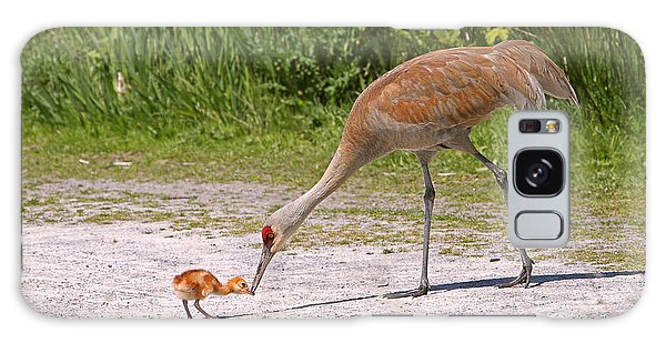 Baby Crane With Mother Galaxy Case