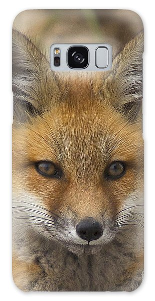 Baby Fox  Galaxy Case by Amazing Jules