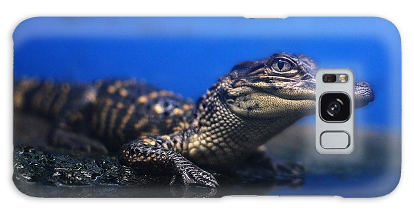 Baby Gator Galaxy Case