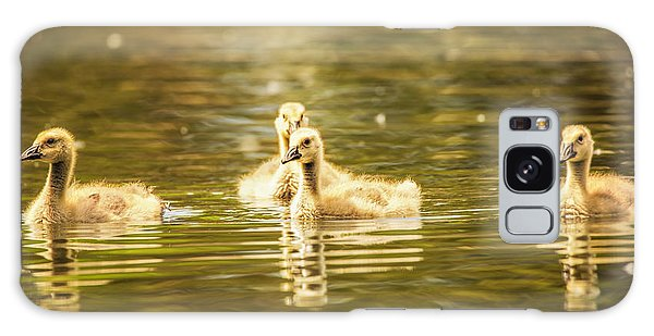 Gosling Galaxy Case - Baby Geese On The Water by Bill Tiepelman