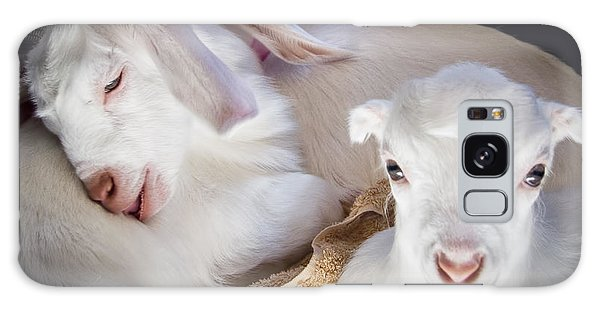 Baby Goats Napping Galaxy Case