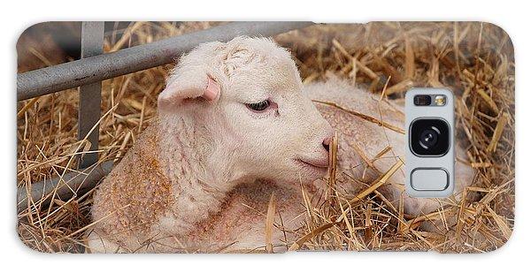Baby Lamb Galaxy Case